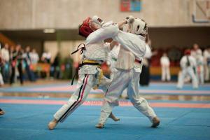 25 апреля 2010 года в Москве прошел Кубок России по Косики каратэ